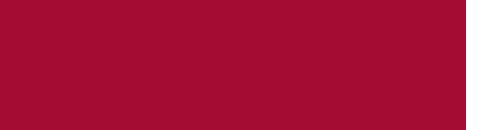 medjet-logo-2.png