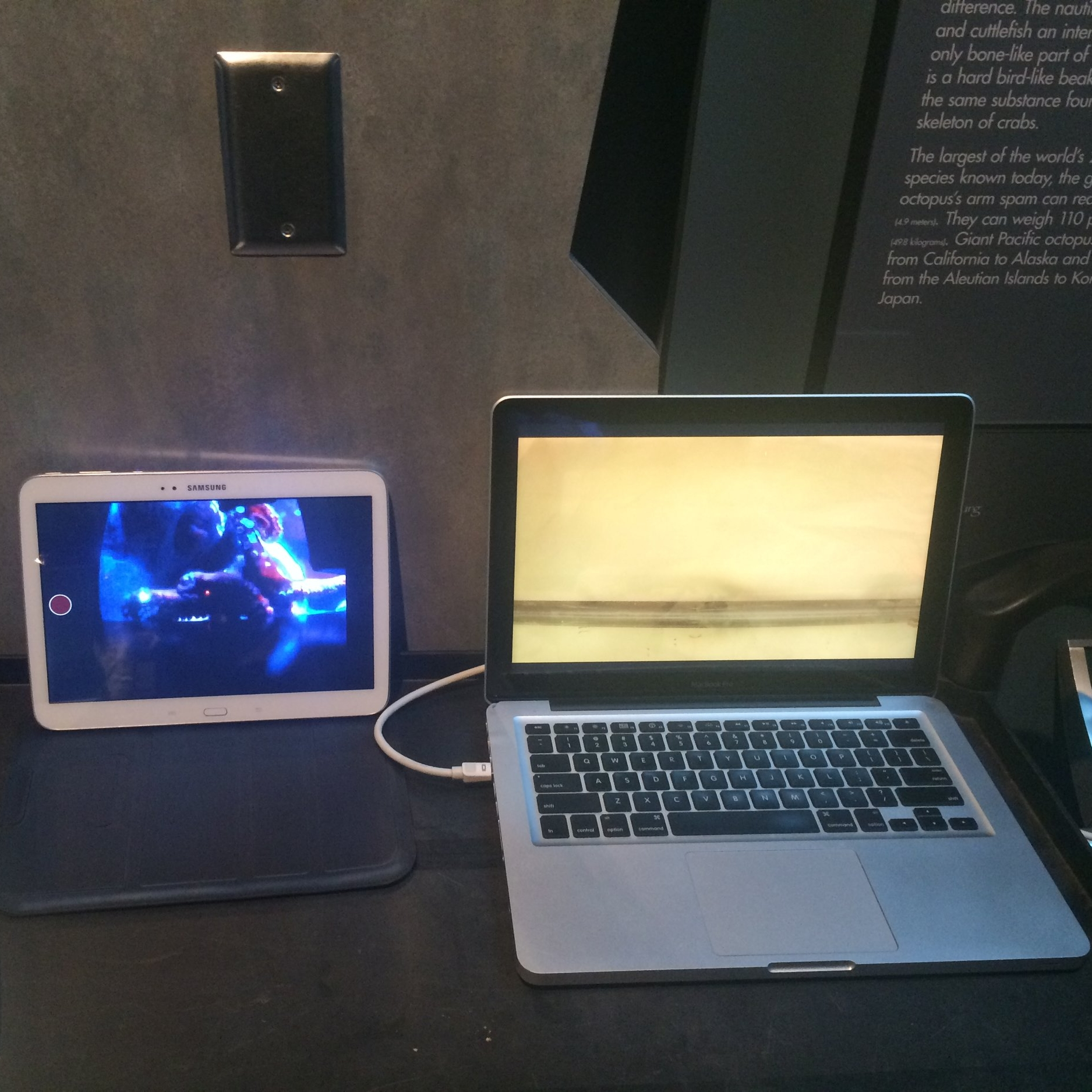 A tablet displays a live video feed of the GPO's reactions (left) while the laptop connected to the TV screen behind the curtain plays the trial video (right).