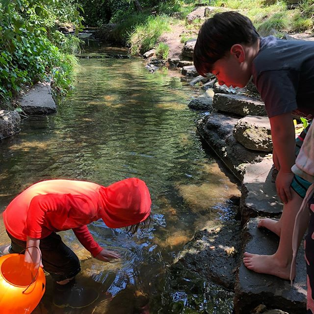 How do you stay cool in this heat? 🦞 #crayfishing 🦞  #creekasclassroom #forestschool #childrenatnatureplay #crustaceansofinstagram #crayfishofinstagram #crawdads #riverplay #mudbugs #rivershedhabitat