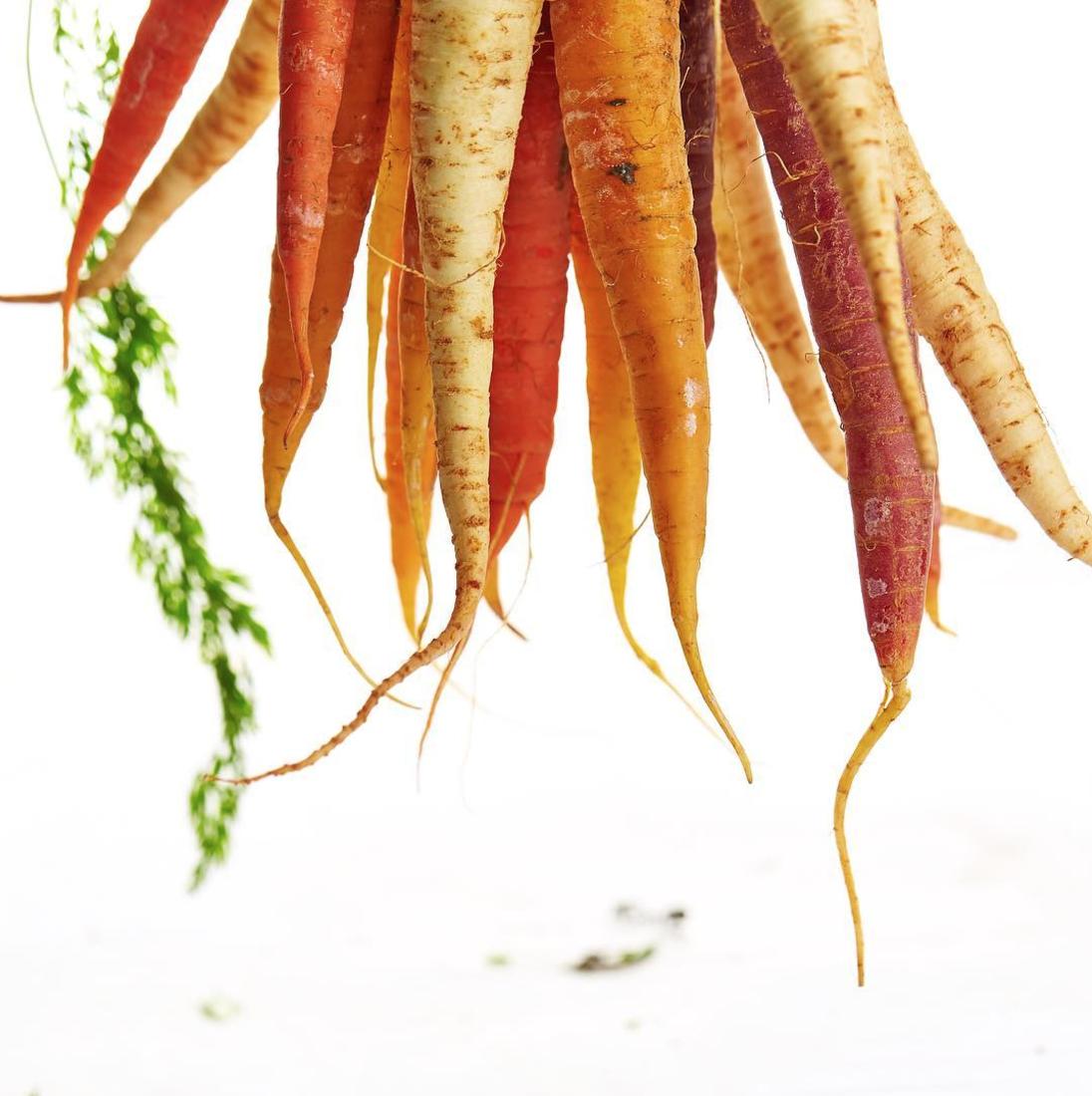 tonic-juicery-carrots