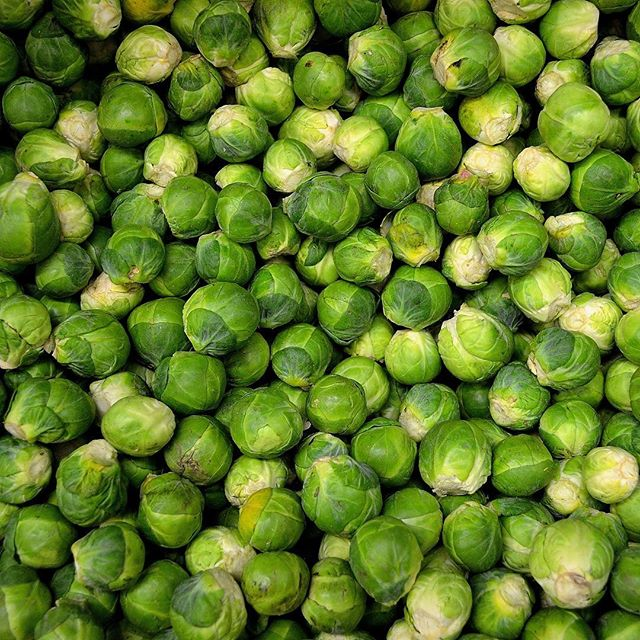 We all know we're supposed to be eating Brussel Sprouts, right? But what is it that makes them so healthy? Well, they're surprisingly high in protein for a vegetable, are a good source of omega-3 fatty acids, and can lower your chronic inflammation risk. #themoreyouknow #realpeoplewhojuice
