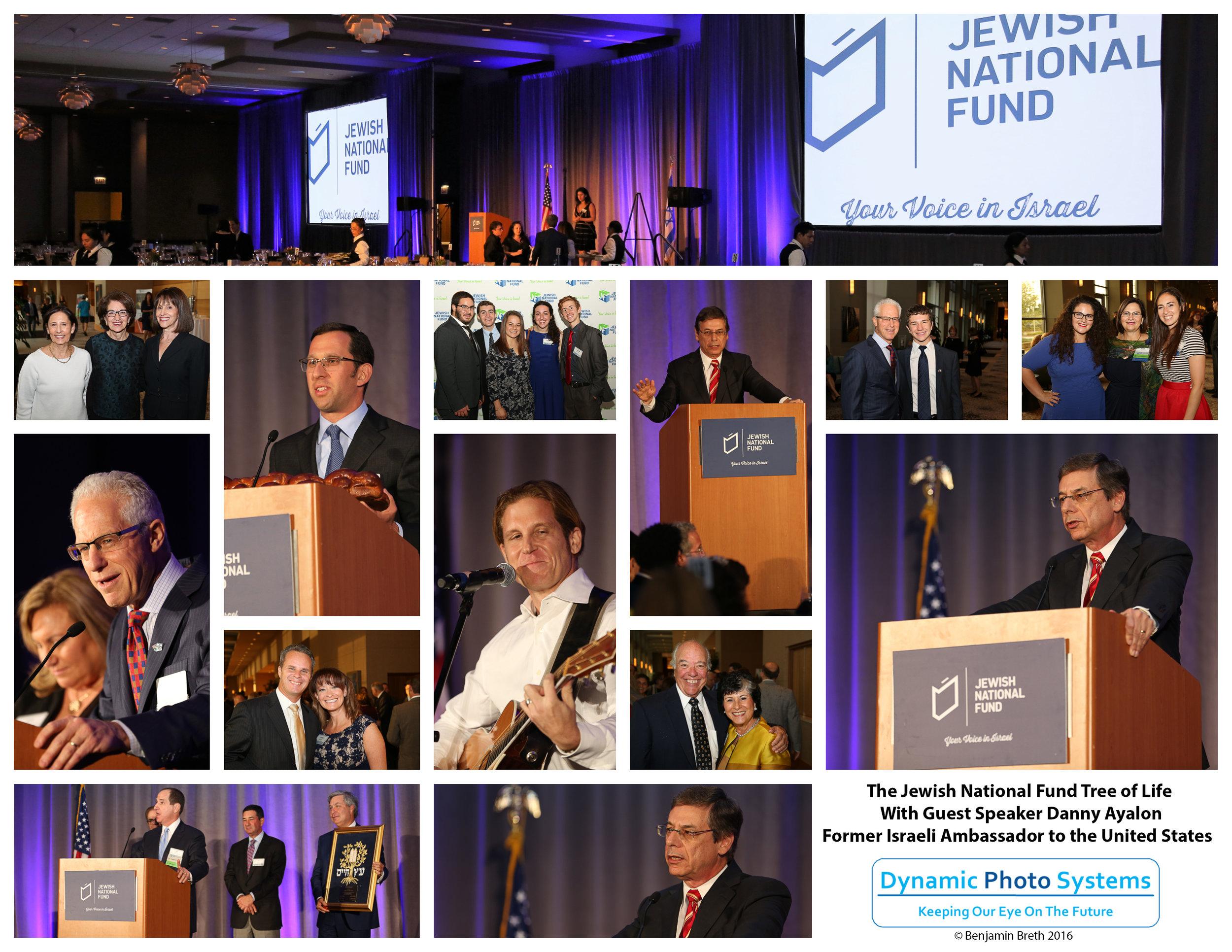 Collage - Jewish National Fund_Tree of Life.jpg