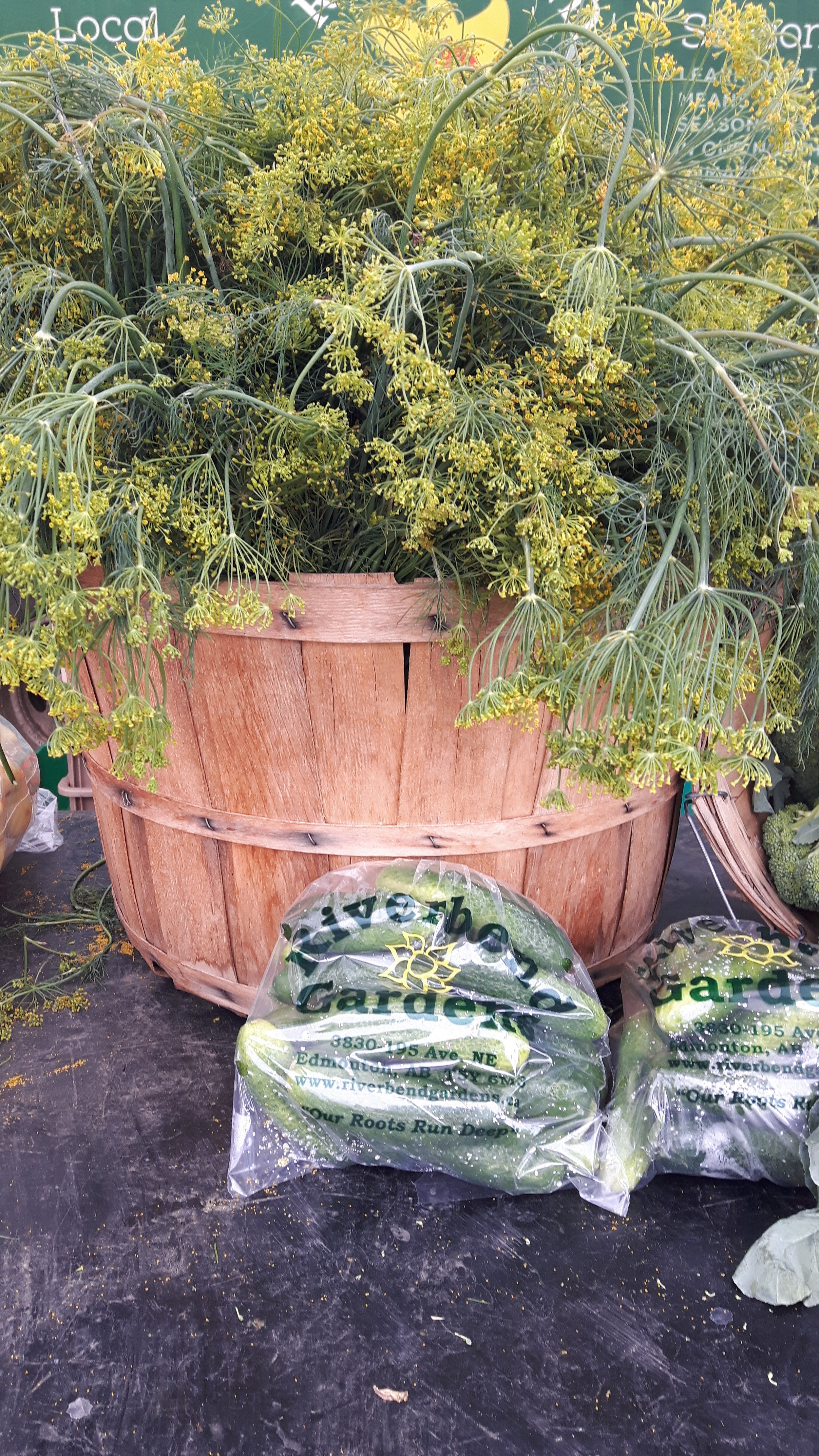 Our photo of the week features the gorgeous dill and cucumber display from Riverbend Gardens last market.