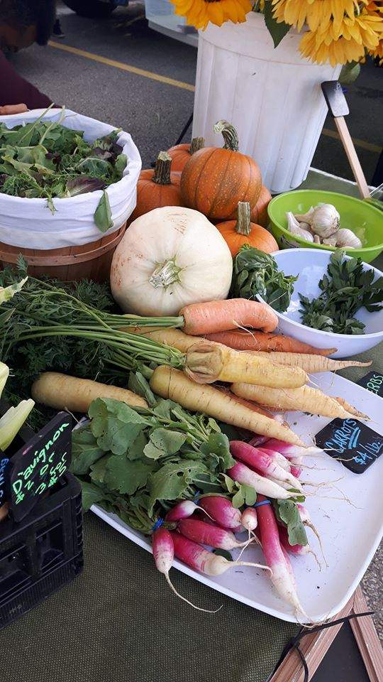 Lactuca has a gorgeous fall spread of veggies for all types of families.