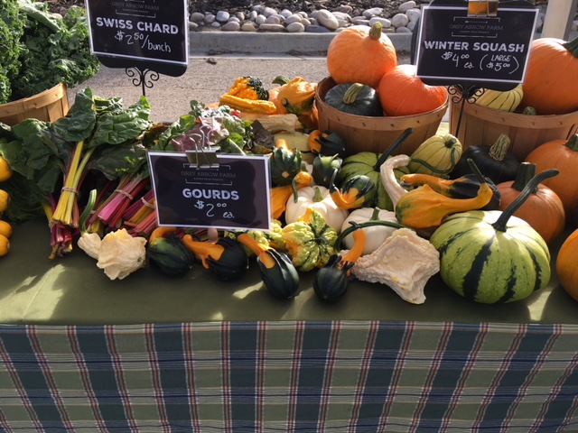 Grey Arrow had the most gorgeous autumn harvest display last week!