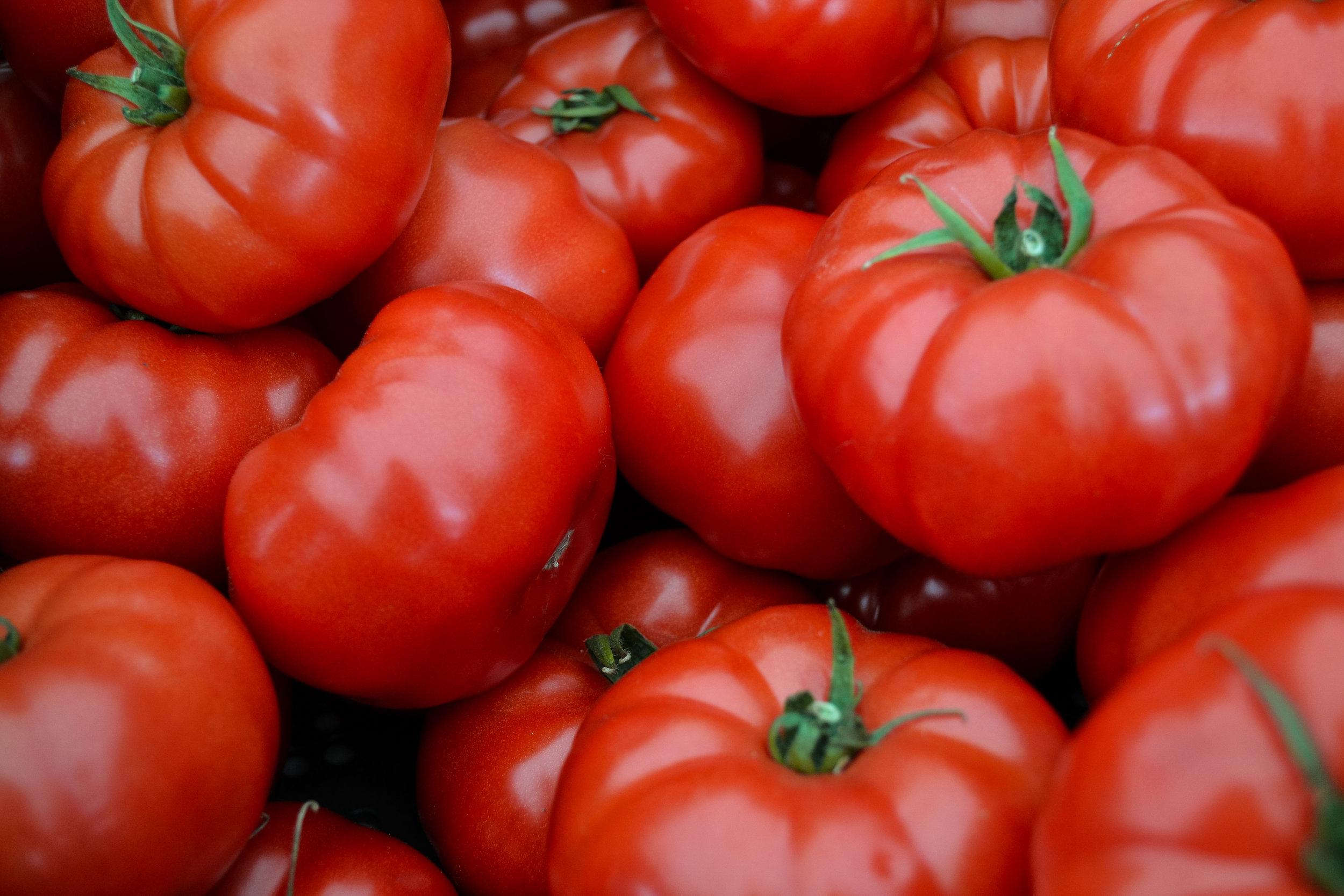 SWEFM tomato.jpg
