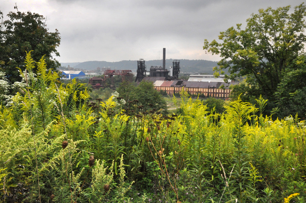 "Carrie Furnace is the last remaining unused blast furnace in the Pittsburgh area. It was built in 1881; furnaces 6 and 7, all that remain, functioned from 1908 to 1978, when the plant was shut down. Carrie made iron for the Homestead Works, at its peak employing approximately 2,400 people and producing over 1,000 tons of iron a day.               ©        Normal   0           false   false   false     EN-US   X-NONE   X-NONE                                                                                                                                                                                                                                                                                                                                                                           /* Style Definitions */  table.MsoNormalTable 	{mso-style-name:""Table Normal""; 	mso-tstyle-rowband-size:0; 	mso-tstyle-colband-size:0; 	mso-style-noshow:yes; 	mso-style-priority:99; 	mso-style-parent:""""; 	mso-padding-alt:0in 5.4pt 0in 5.4pt; 	mso-para-margin-top:0in; 	mso-para-margin-right:0in; 	mso-para-margin-bottom:10.0pt; 	mso-para-margin-left:0in; 	line-height:115%; 	mso-pagination:widow-orphan; 	font-size:11.0pt; 	font-family:""Calibri"",""sans-serif""; 	mso-ascii-font-family:Calibri; 	mso-ascii-theme-font:minor-latin; 	mso-hansi-font-family:Calibri; 	mso-hansi-theme-font:minor-latin;}     Brian Cohen, 2011."