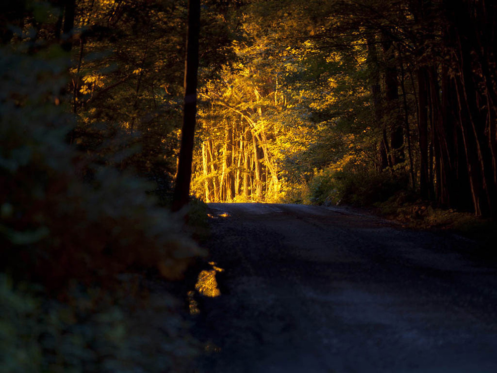 An orange glow from a nearby methane flare illuminates an otherwise darkened road. Springville, Susquehanna County, 2011.  © Nina Berman/MSDP 2011