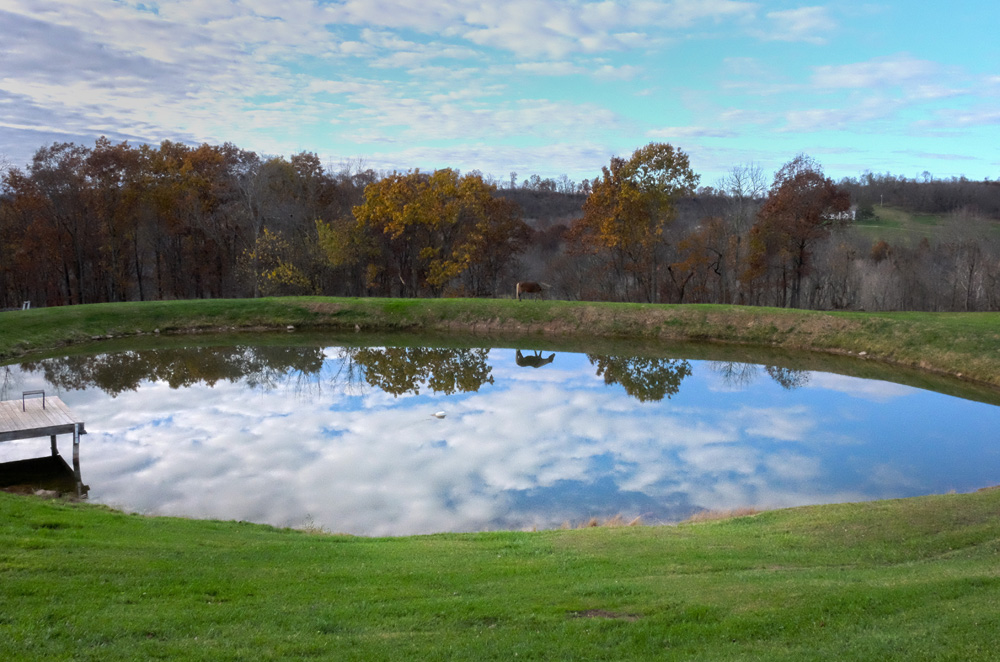 The pond at the Muffet farm, from the east. © Brian Cohen/MSDP 2015