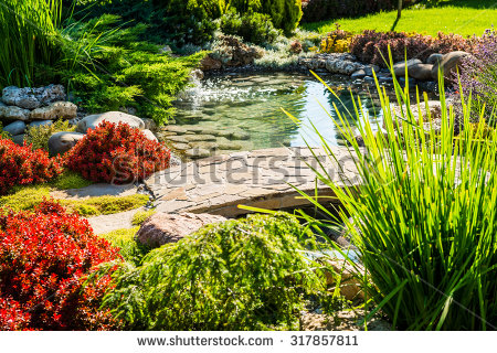 stock-photo-landscape-design-317857811.jpg