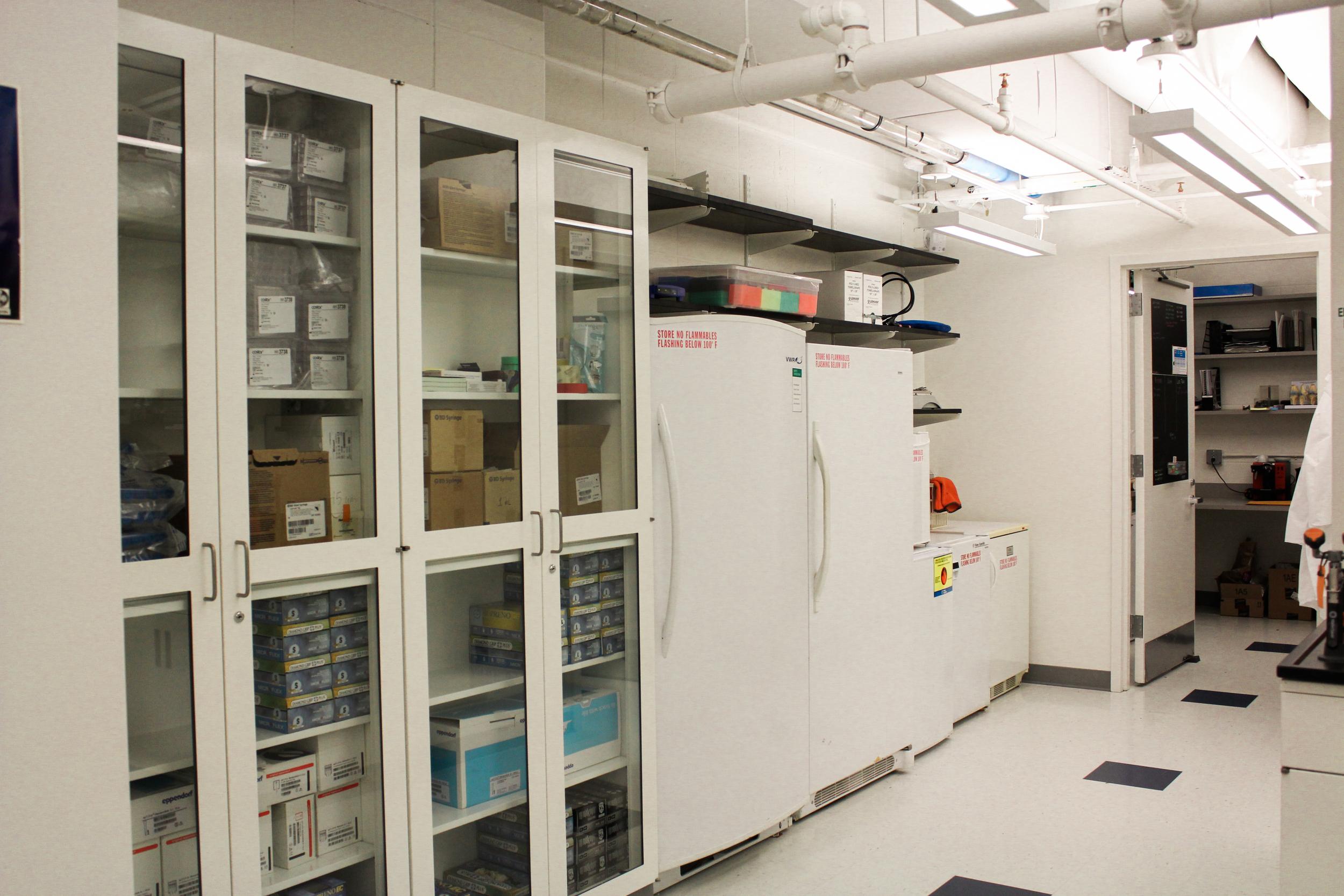 Lab Renovations-2.jpg