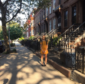 our temporary brownstone in Brooklyn