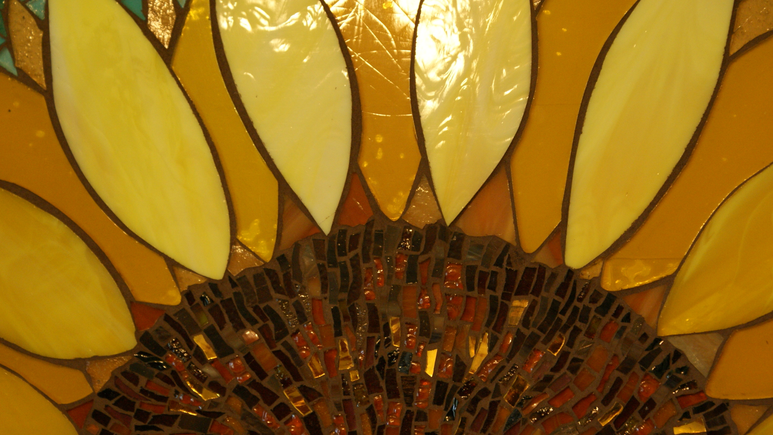 Sunflower Close Up Details