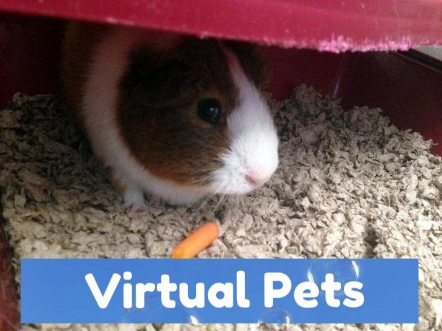 pets in virtual reality.jpg