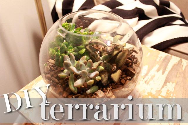 DIY Terrarium - all precious and pleasant blog