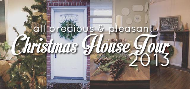 All Precious & Pleasant Christmas Tour 2013