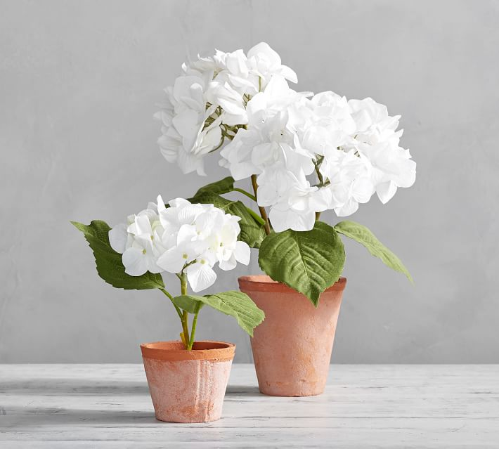 faux-potted-hydrangea-white-2-o.jpg