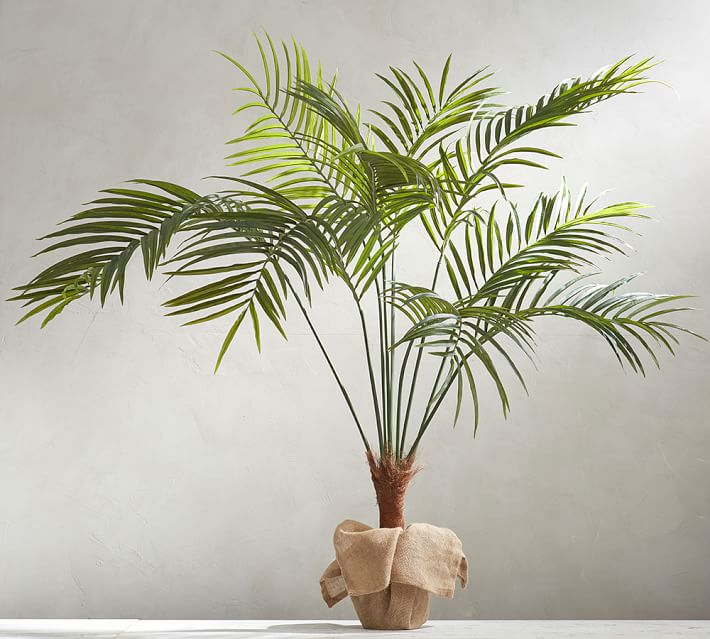 faux-potted-palm-tree-o.jpg
