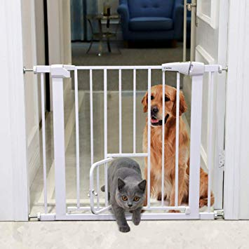 Jeremy: Baby Gate with Pet Door (pets not included).  CLICK THE PIC  to check it out!