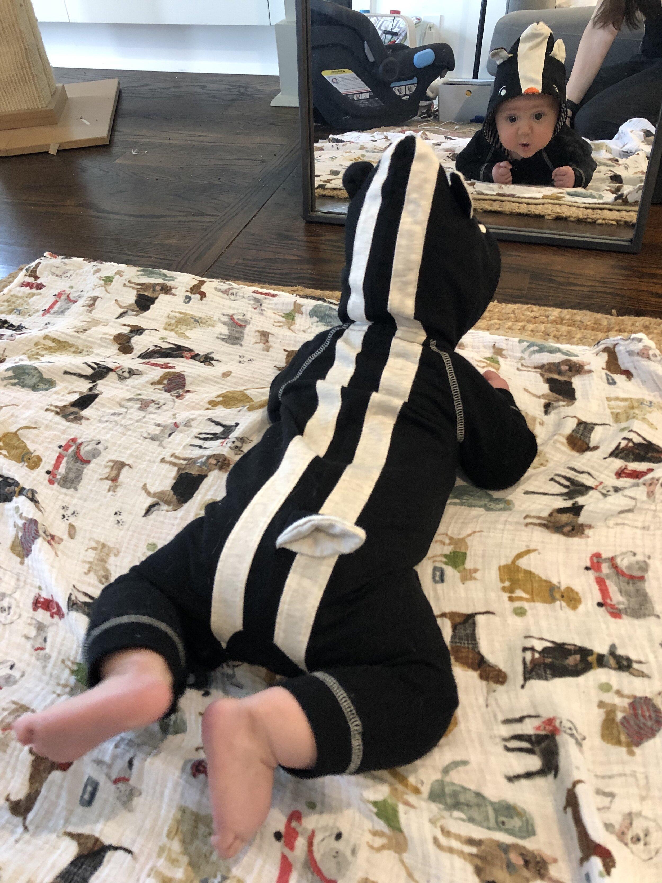 Judah as a skunk...just in general