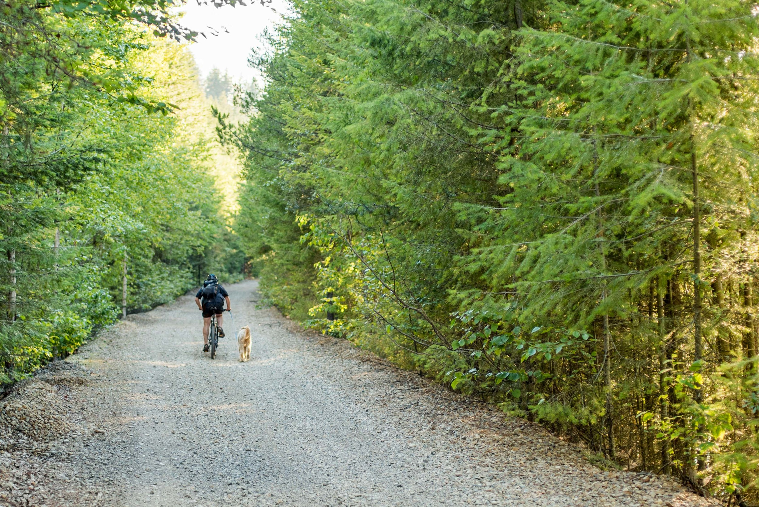 The Columbia and Western Rail Trail
