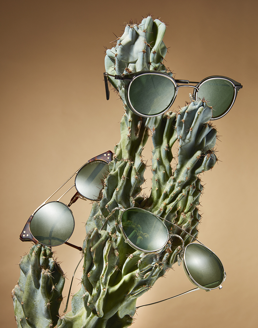 20190203_Novak_EarthTones_sunglasses.jpg