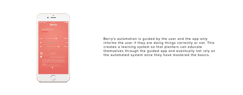 Berry3.jpg