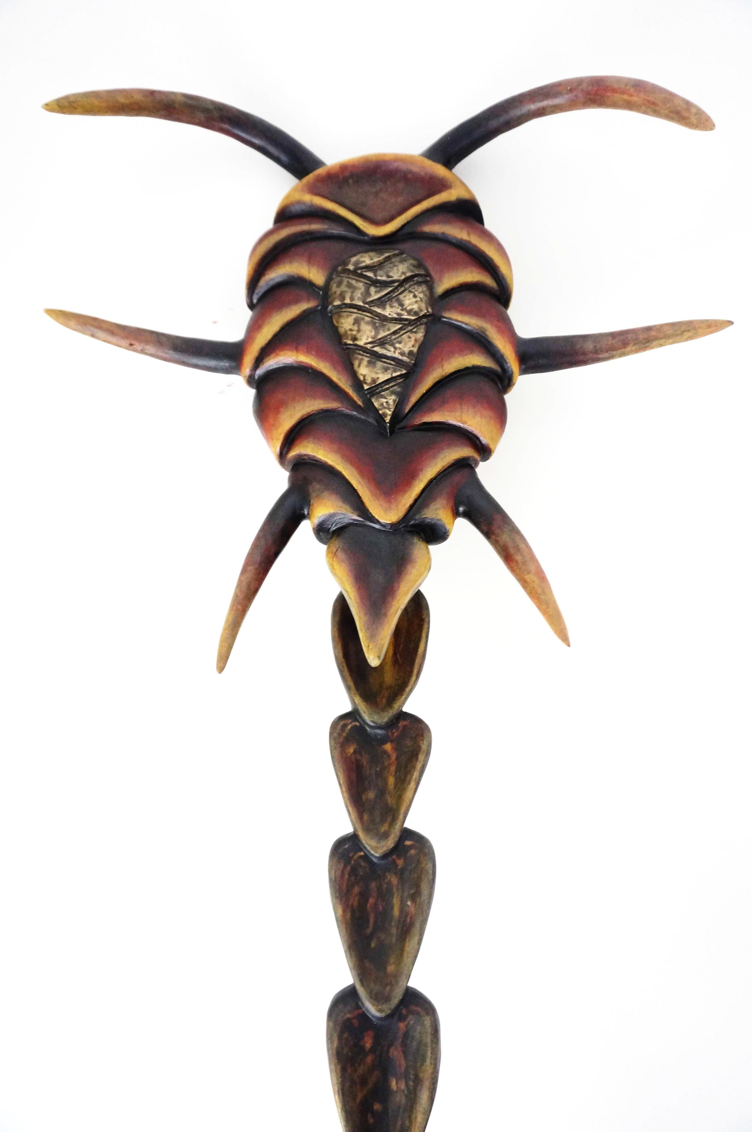 Carapace(artefact).JPG