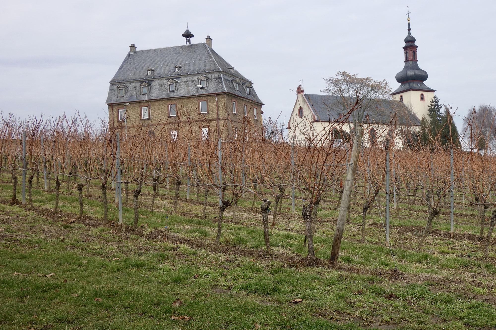 germany chateau.jpg