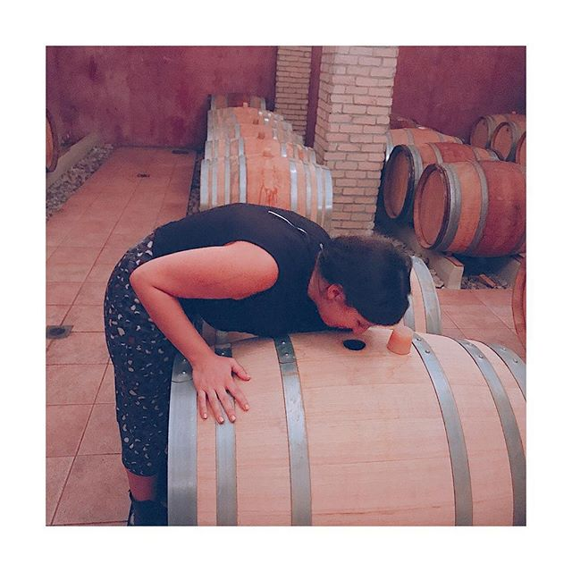 Have you ever stuck your nose 👃 in  a barrique full of aging wine? Wow! The aromas 💥 🎉💥 🎶 First sniff smells like a very smokey scotch - it's all toasted oak! Here the winemaker @ktimavasiliou ages white Savatiano� (the main grape of the Athens vineyard) for 6 months to create its Savatiano Fumé.  No wonder that the Burgundy-trained winemaker and oenologist George Vasiliou, uses the white Burgundy approach to this Greek grape. It's aromatically neutral like Chardonnay so this handling gives it an extra dimension and complexity. Thumbs up! ��And bottoms up ��🙈🙈