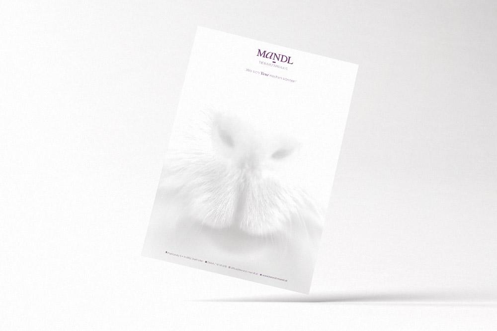 mandl-briefpapier-tierarztpraxis-graz-umgebung-klein.jpg