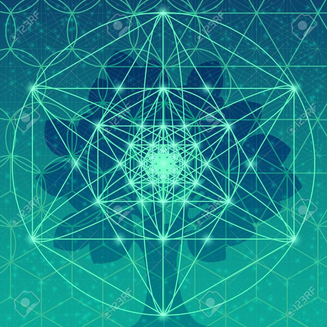 fusion_energetique_marie_rose_Hax7uya.jpg