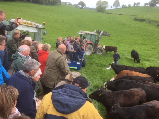 Visiting Marc Jones' Calf Rearing & Finishing Unit, Trefnant Hall Farm, Newtown