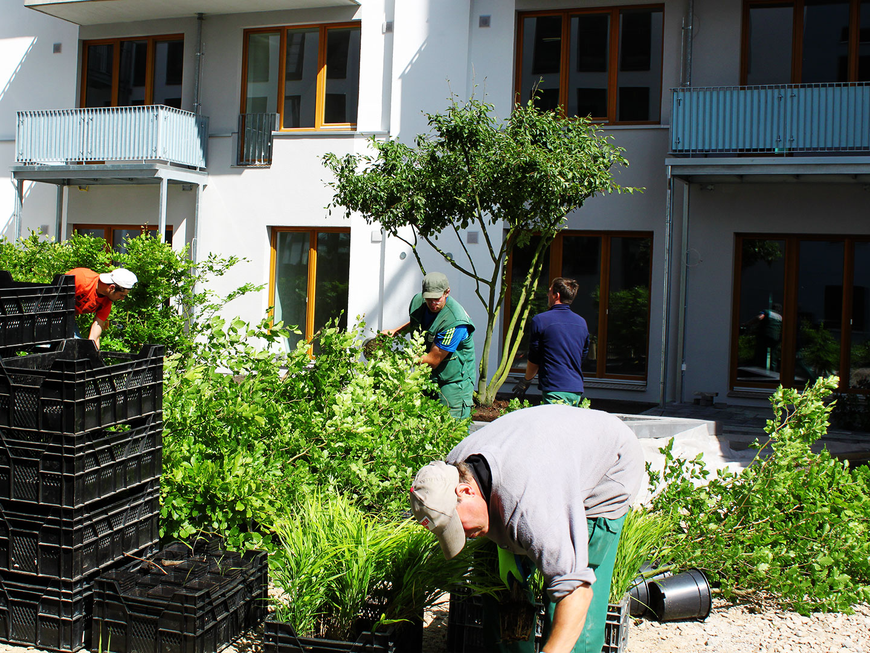 07_Maahs-Ivens_Gartenbau_Referenz7_Herausragend_Gallerie_5.jpg