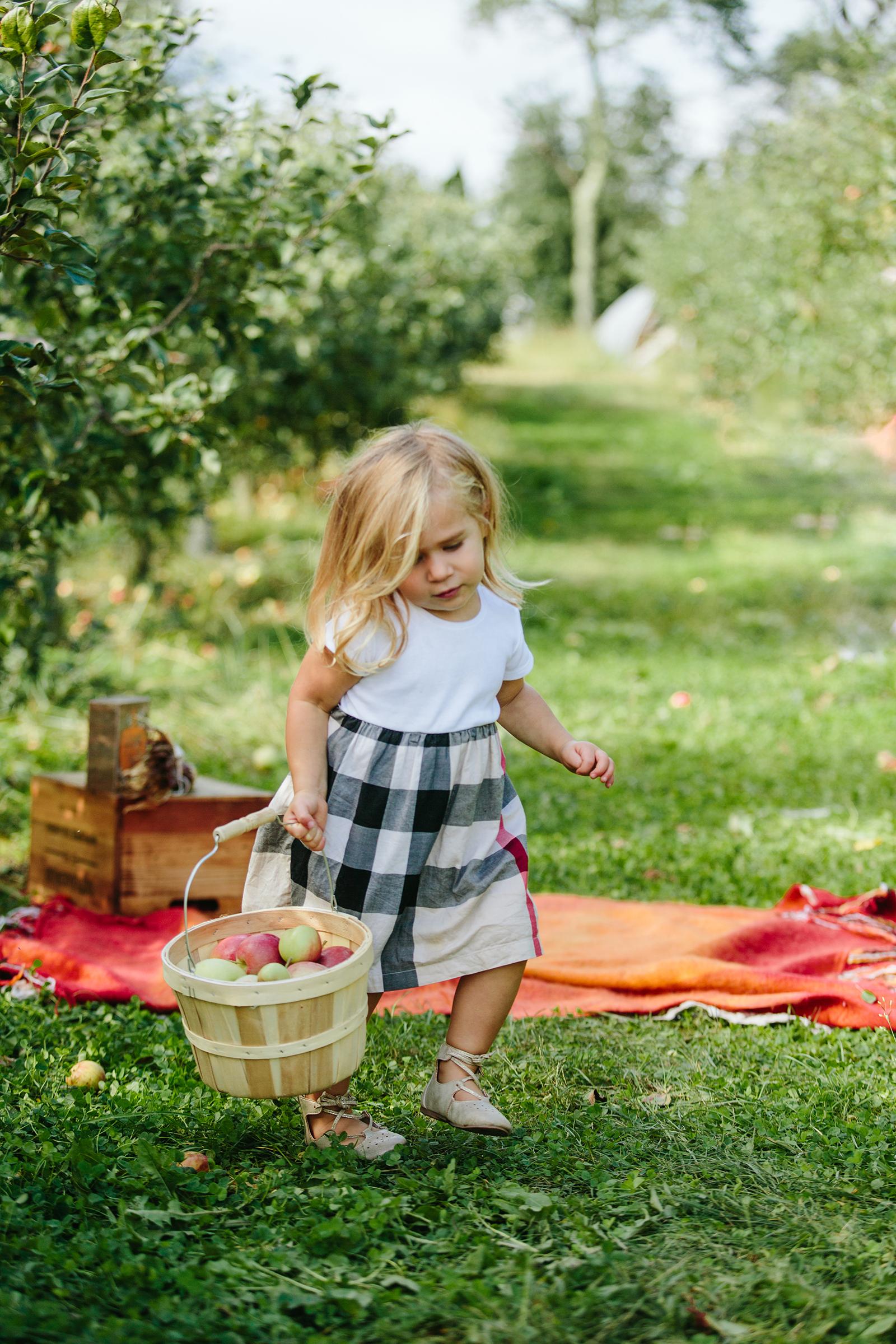 keith's farm and apple orchard.jpg