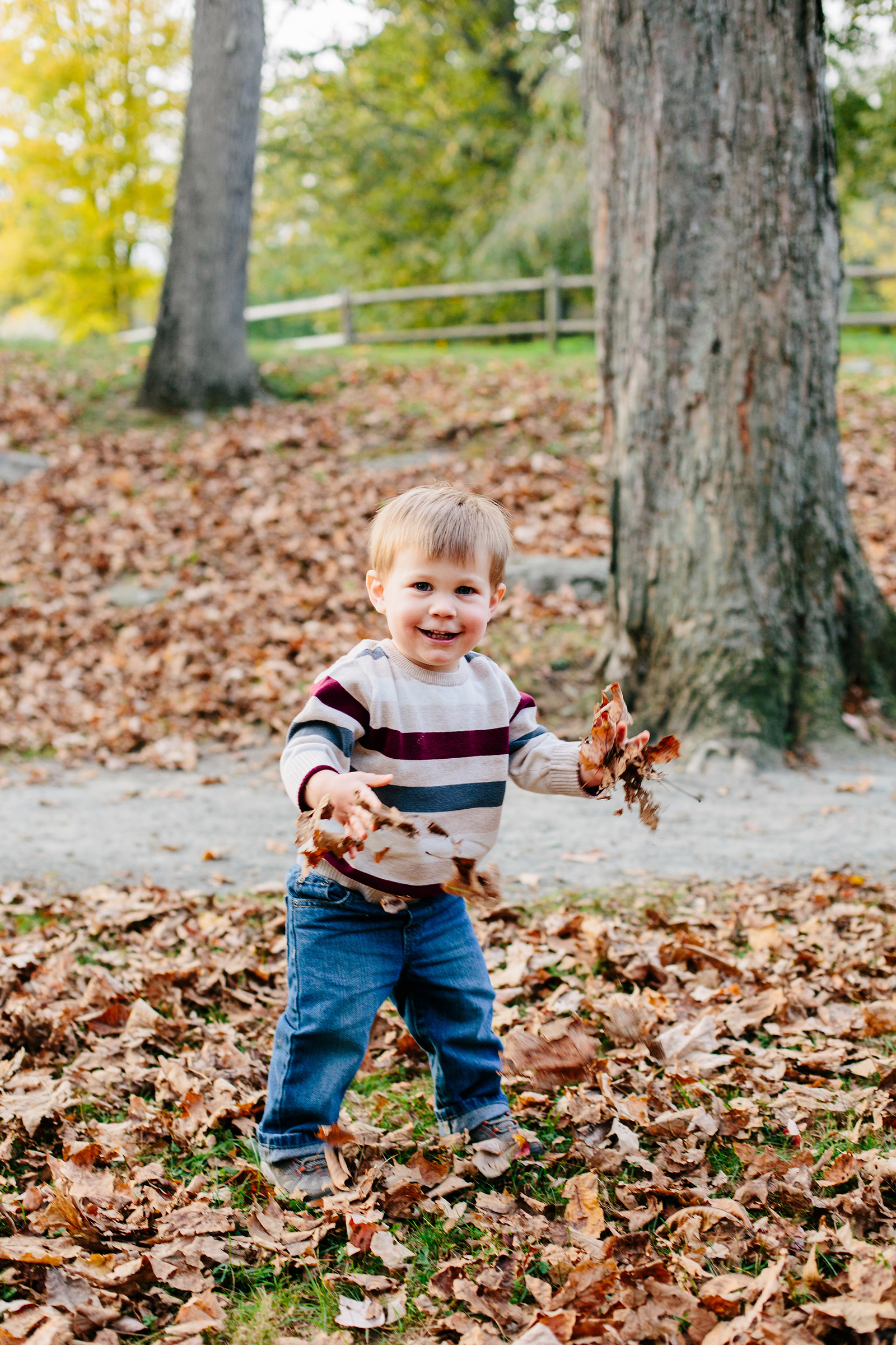 toddler photographer.jpg