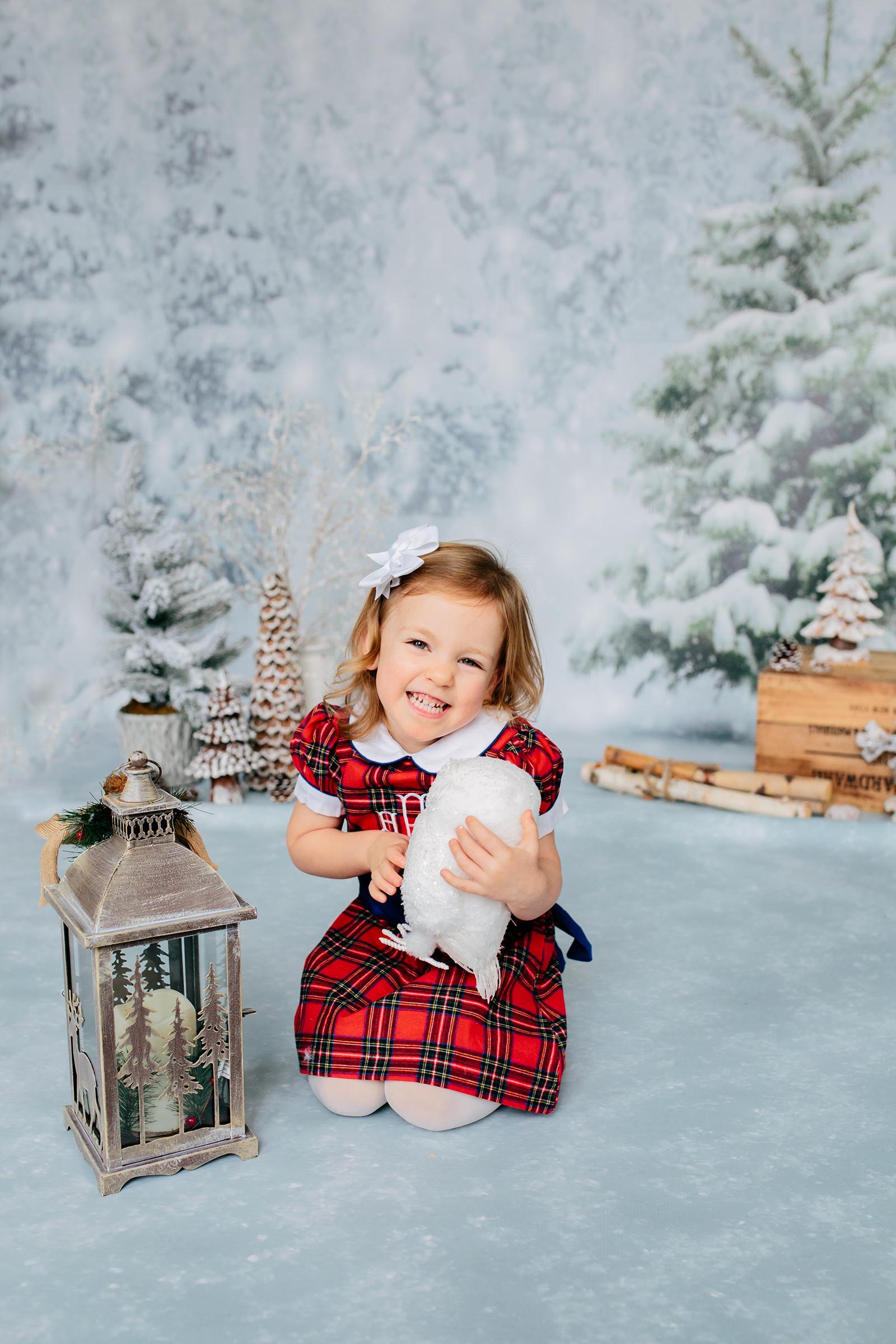 winter wonderland mini.jpg