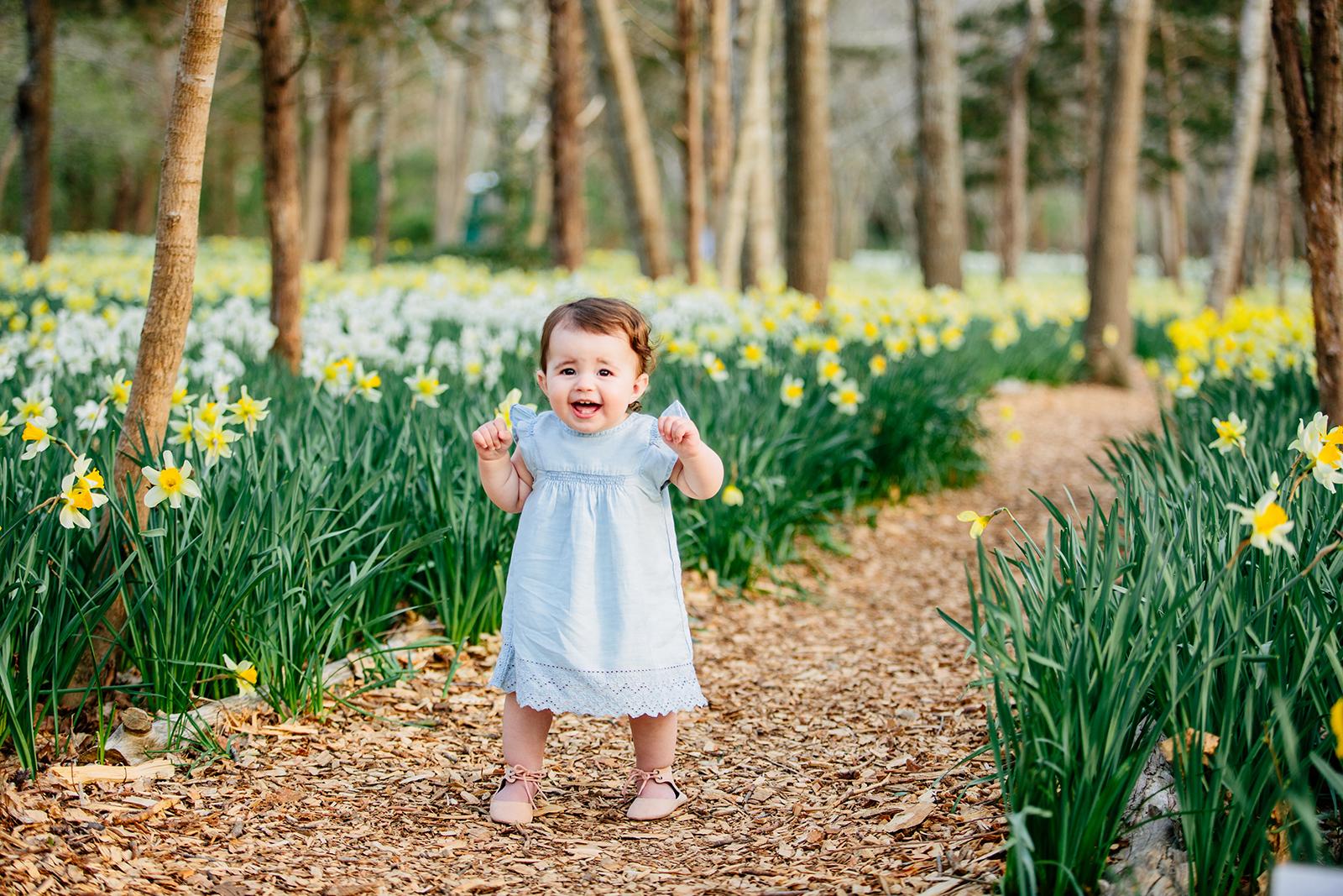 daffodil field photographer.jpg