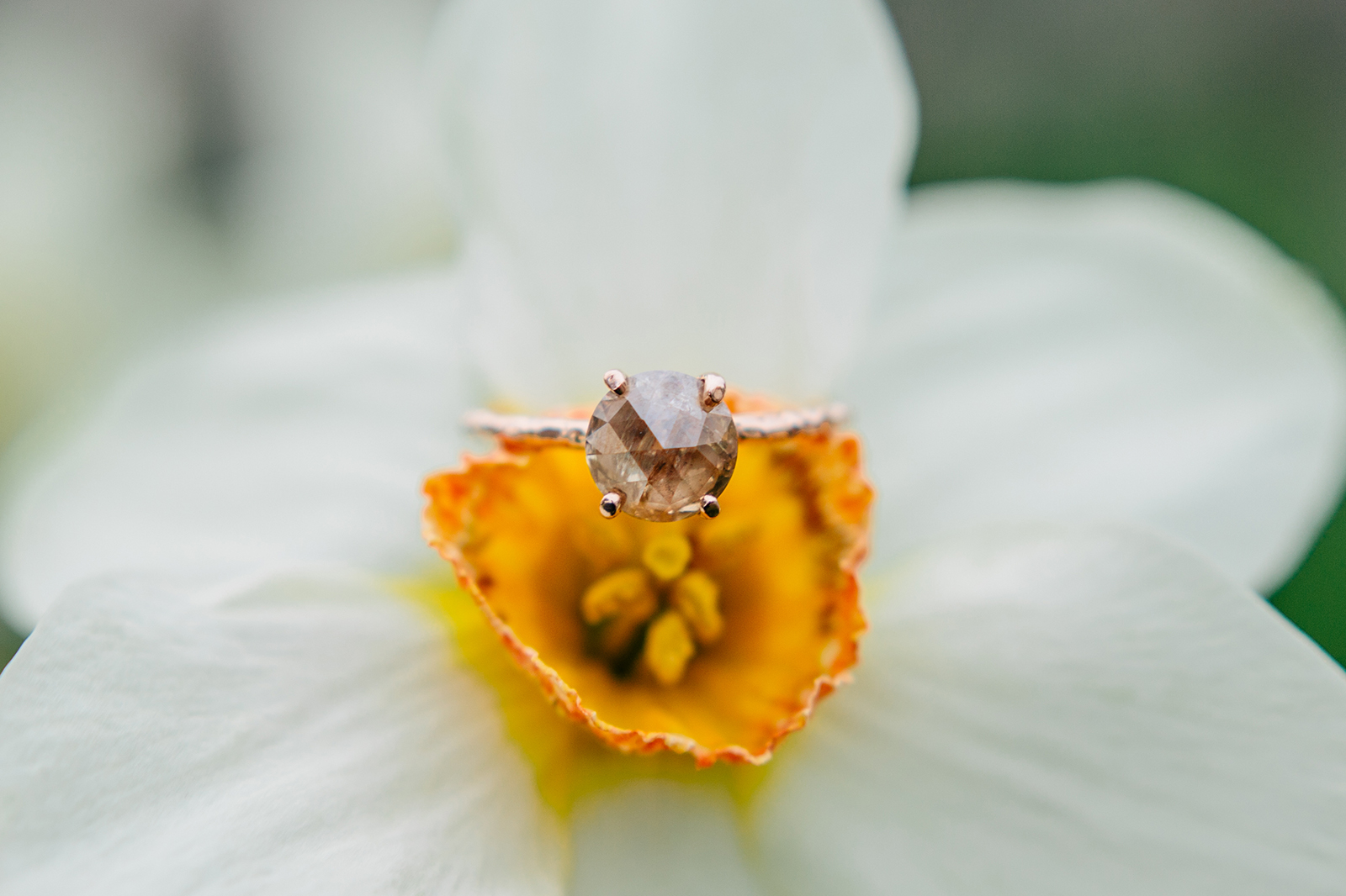 engagement photographer.jpg