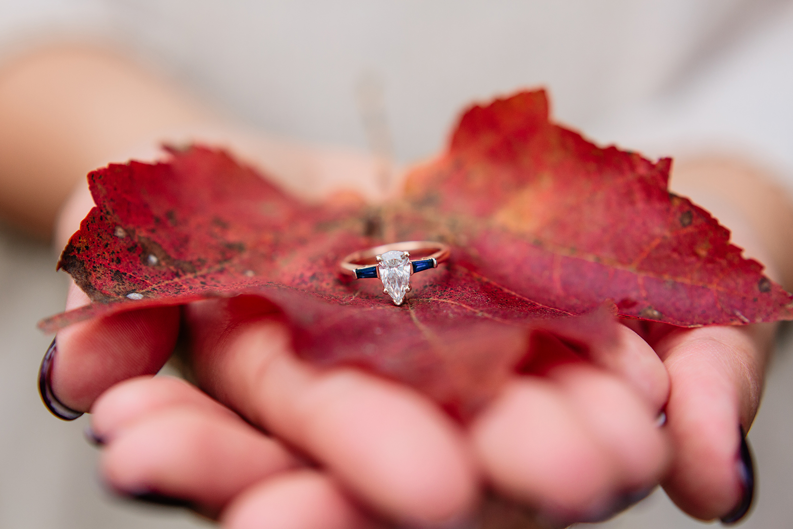 fall engagement session.jpg