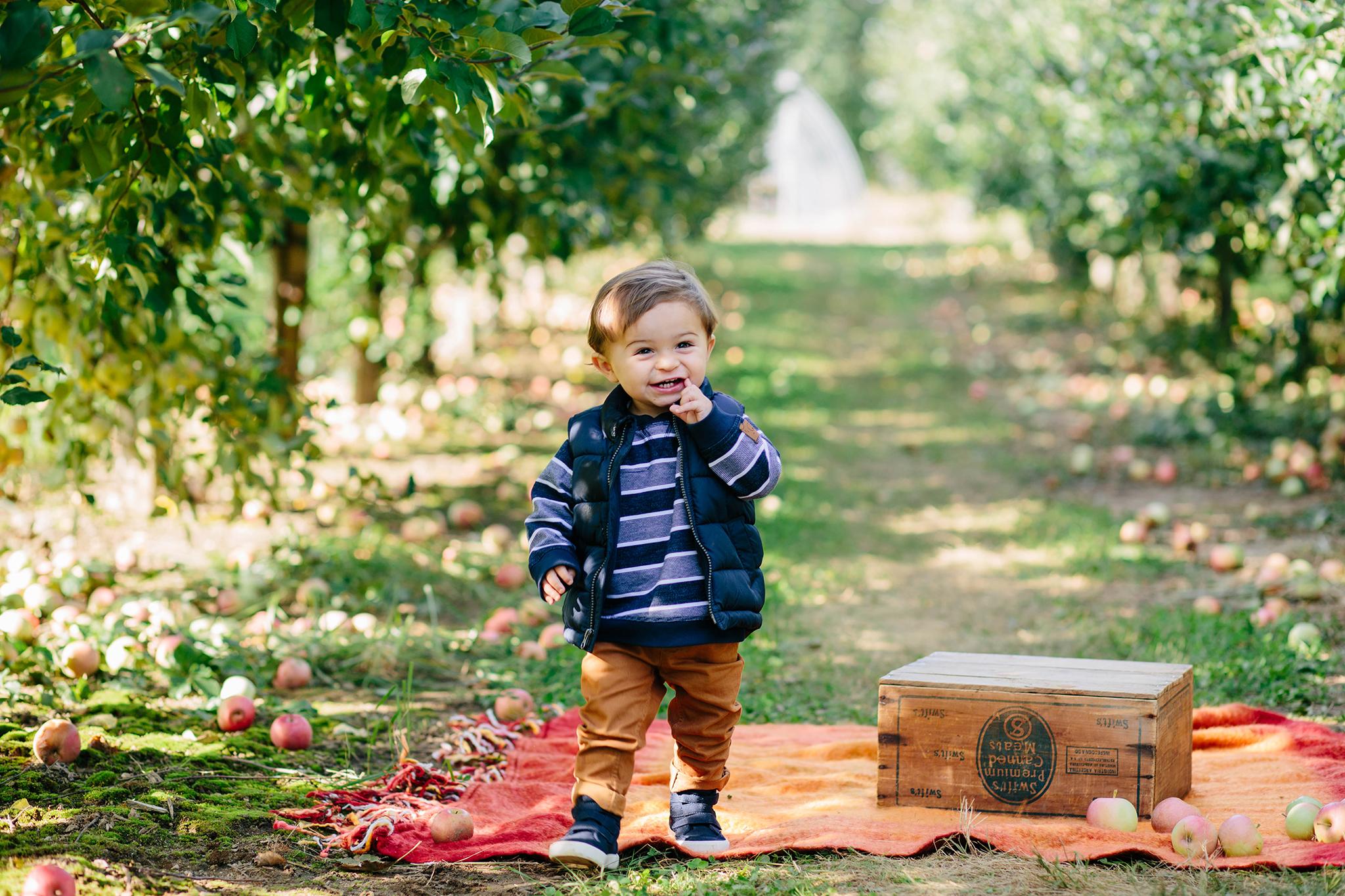 apple mini sessions.jpg