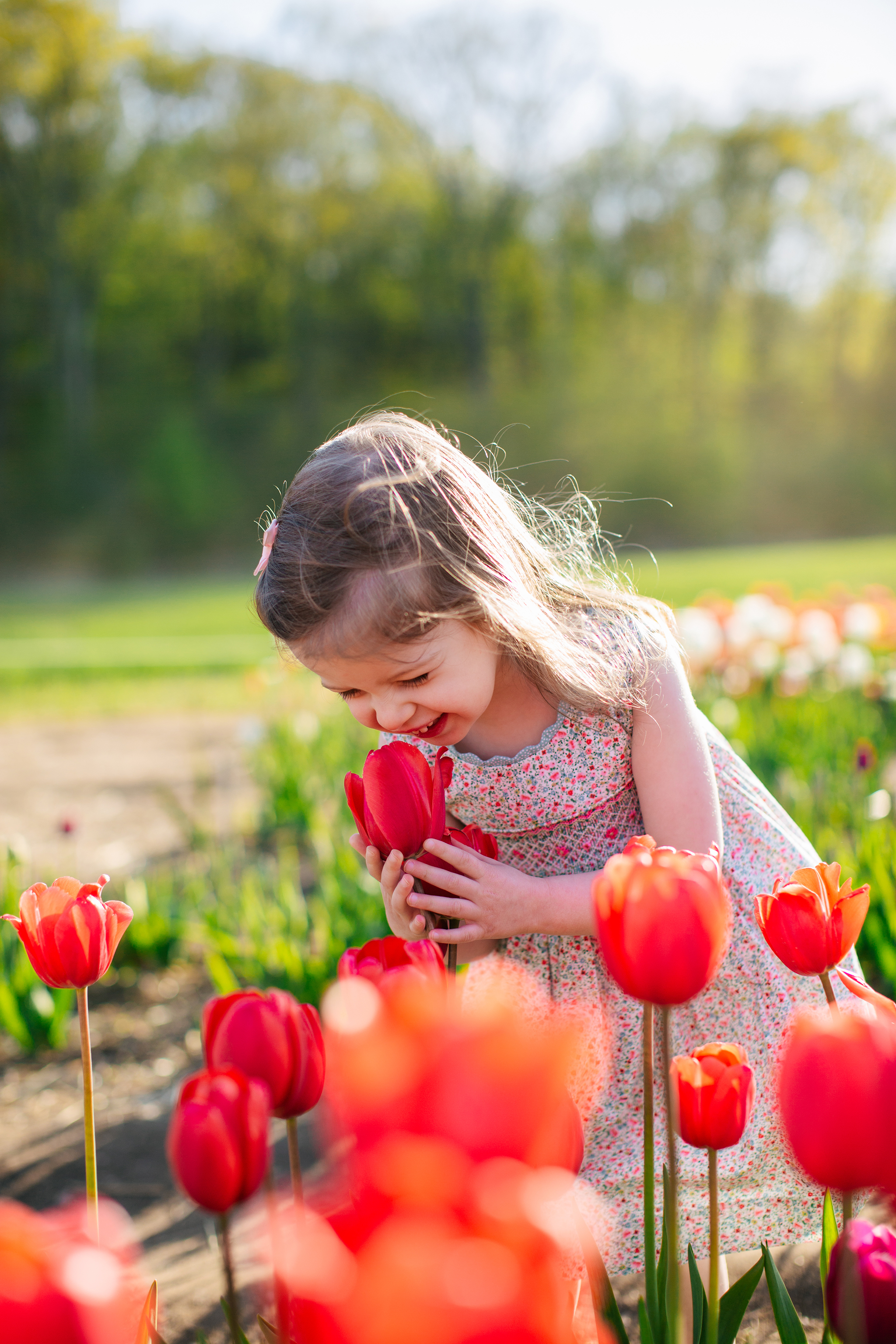 rhode island tulip farm.jpg