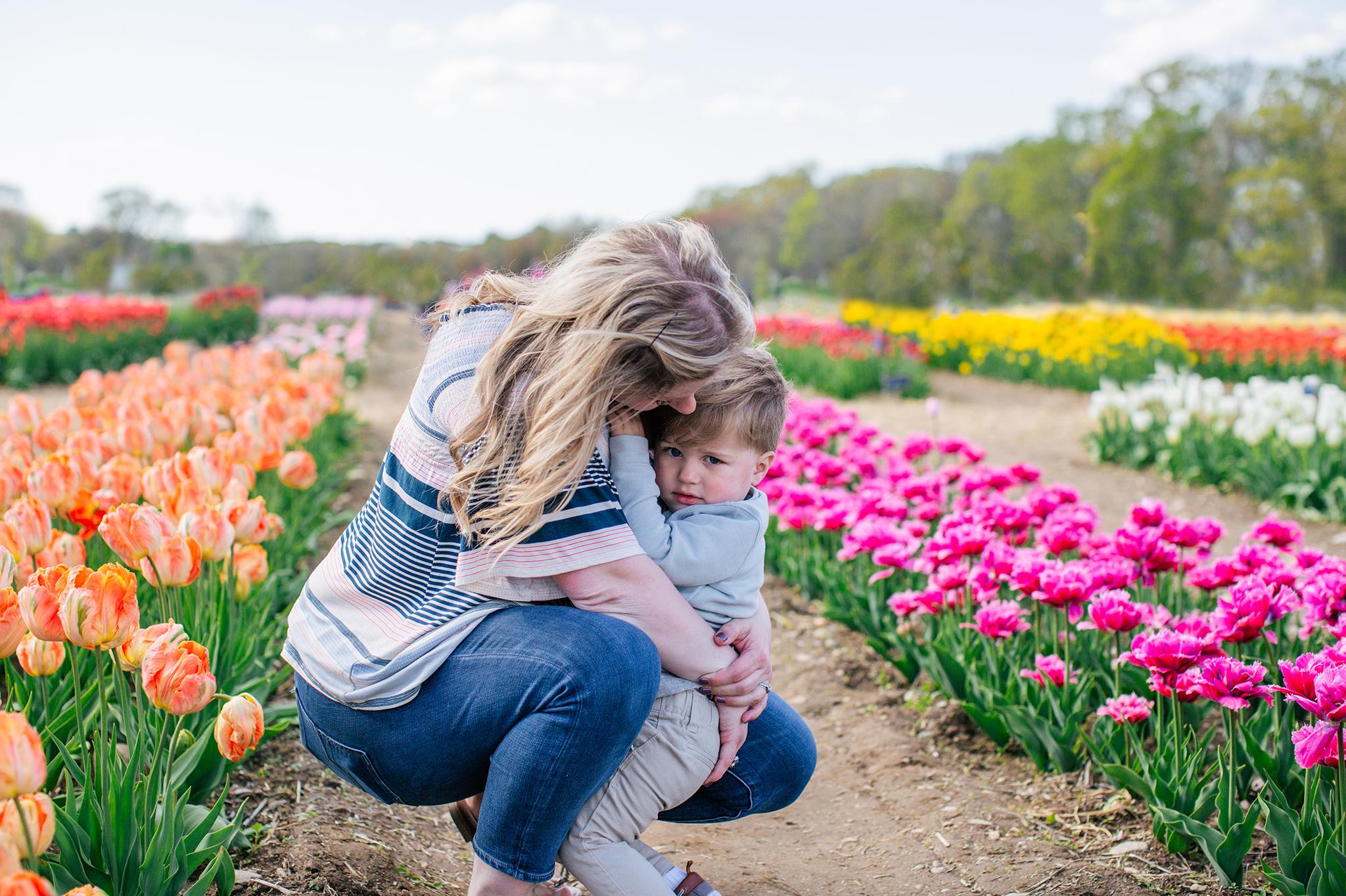 tulip farm rhode island.jpg