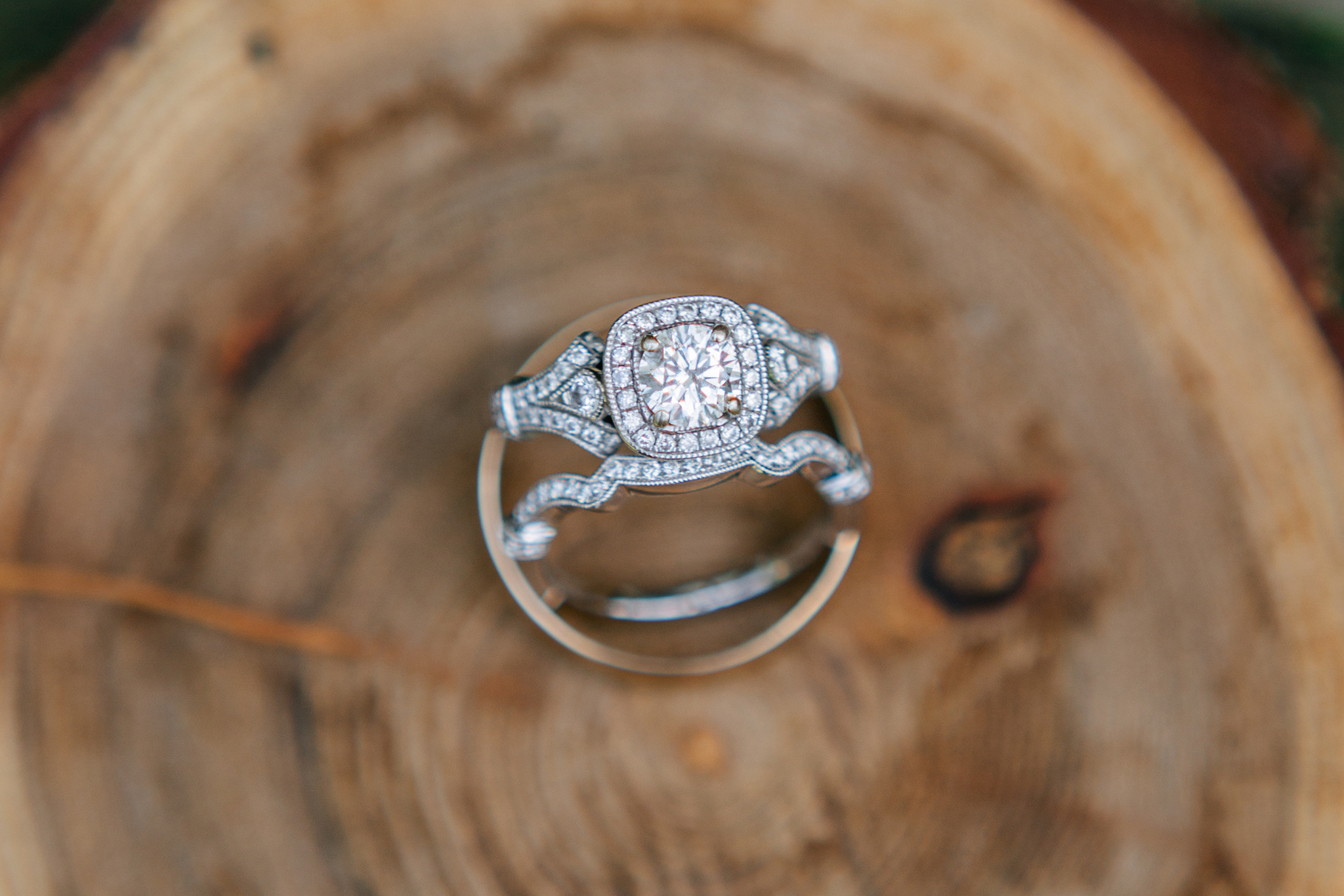 photography by mallory - wedding ring.jpg