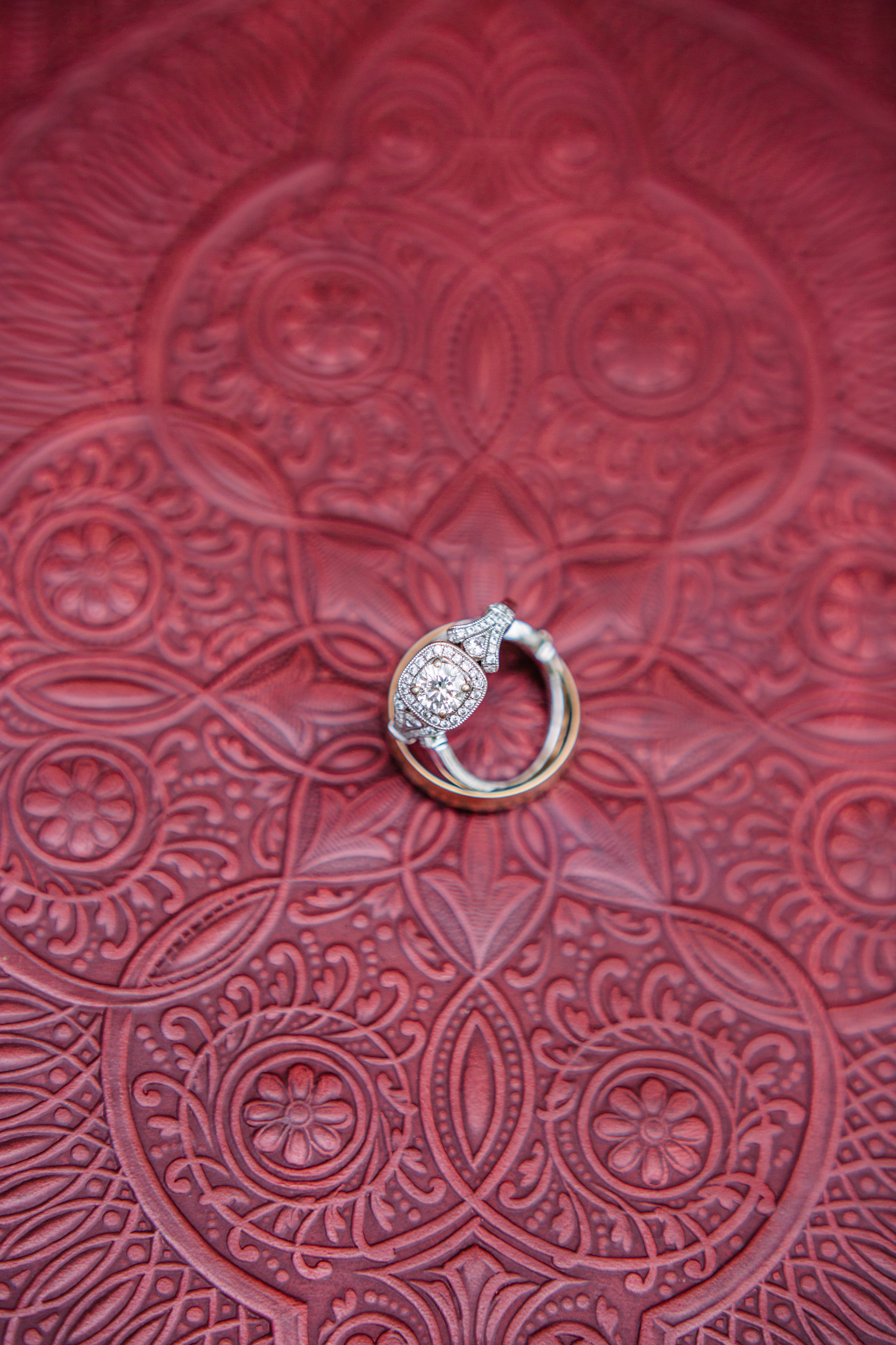 photography by mallory - wedding rings.jpg
