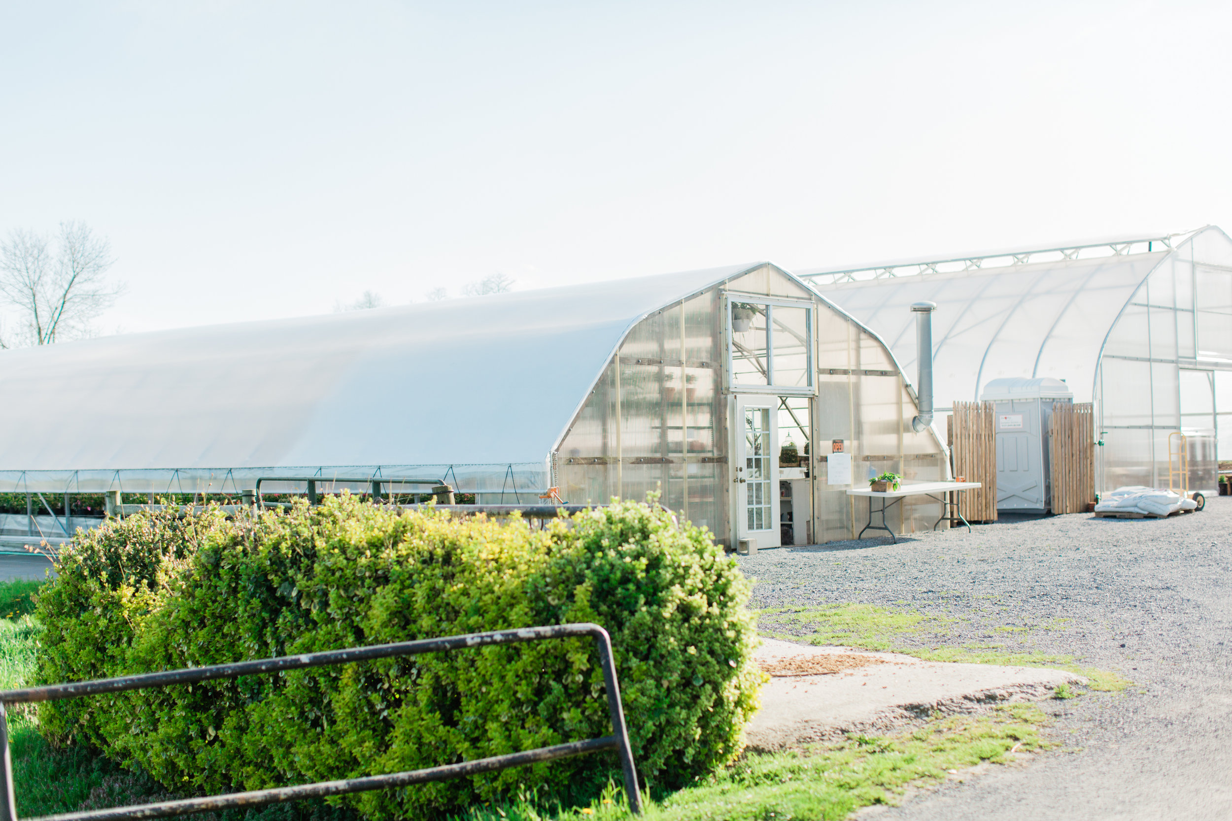 Don't you just love how a greenhouse looks from the outside?
