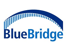 BlueBridge Logo (2) - jpg.jpg