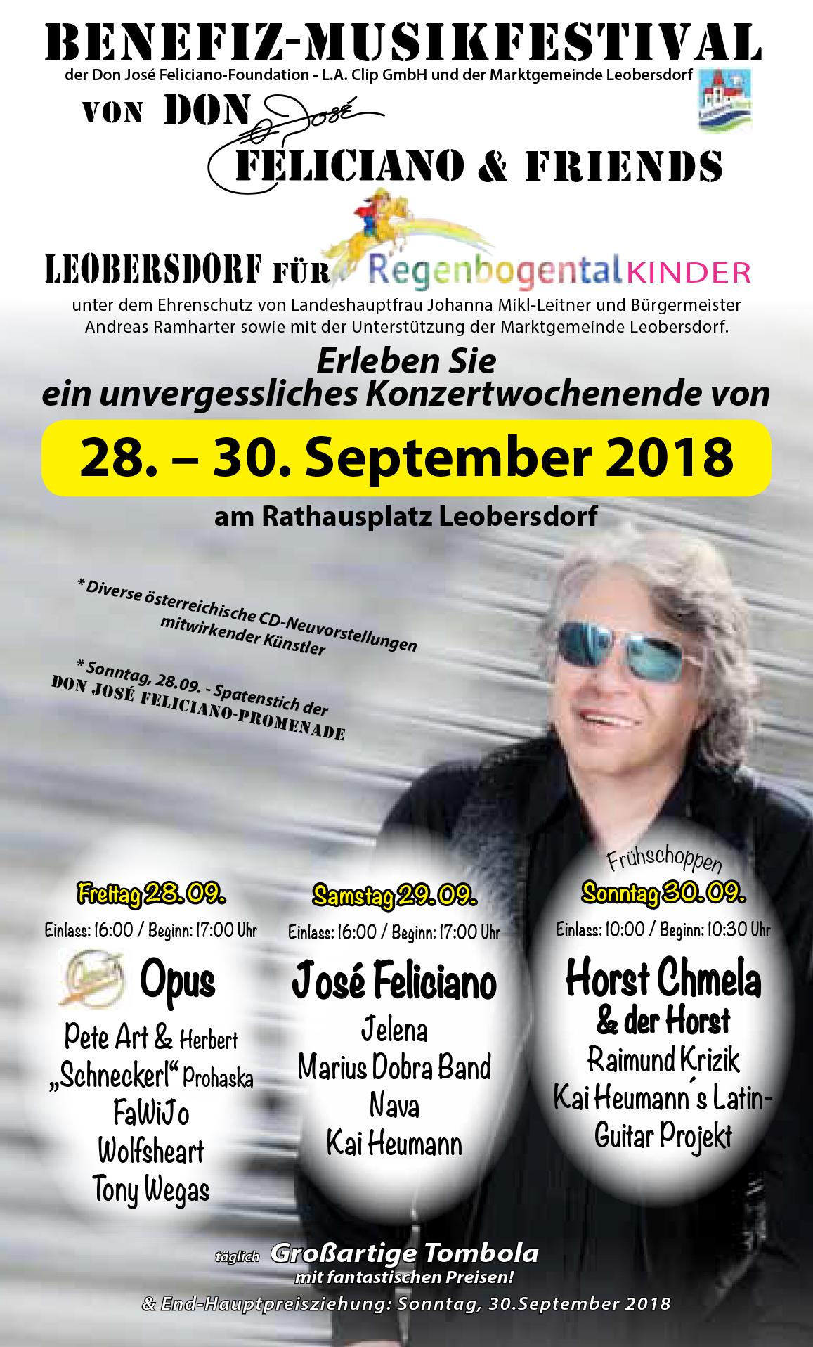 Benefiz_Musikfestival_LO_2018_Flyer_Internet_S1.jpg