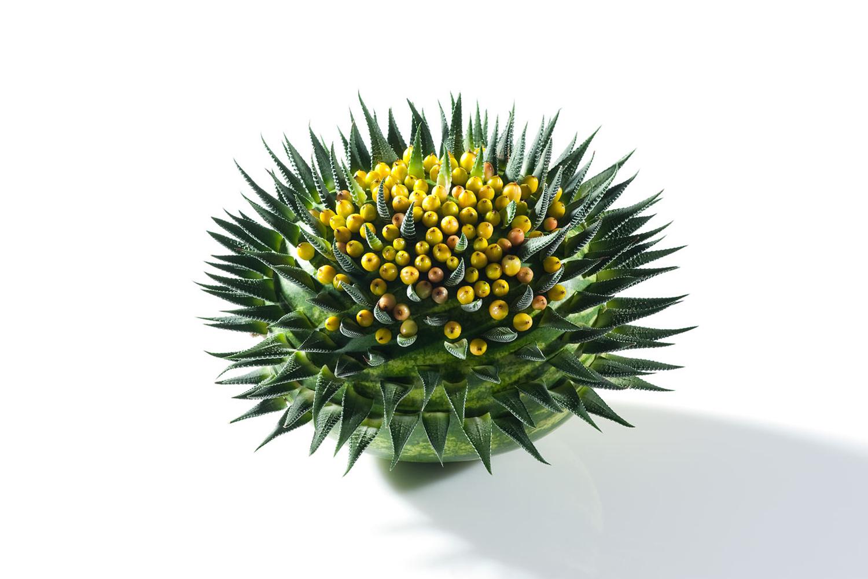 08) david-ragg-monograph-flowers-campbell-rowley-photography-19.jpg