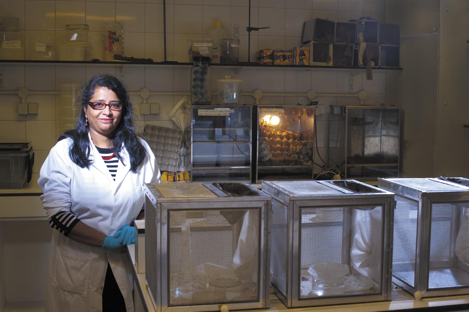 15) Research Profile-Rita Tewari B Img1228.jpg